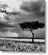 Maasai Mara In Black And White Metal Print