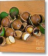 Macadamia Nuts Metal Print