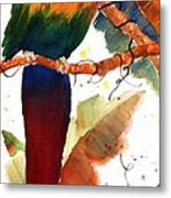 Macaw Feathers Metal Print