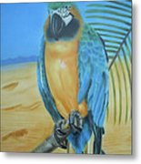 Macaw On A Limb Metal Print
