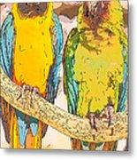 Macaws Metal Print