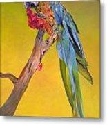 Macaw's Dream Metal Print