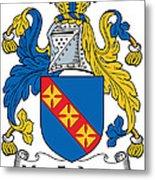 Macfadyen Coat Of Arms II Irish Metal Print