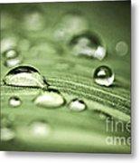 Macro Raindrops On Green Leaf Metal Print