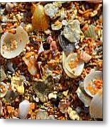 Macro Shells On Sand3 Metal Print