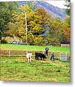 Mac's Farm In Balsam Grove 2 Metal Print