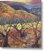 Madera Canyon 2 Metal Print by Caroline Owen-Doar
