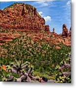 Madonna And Child Two Nuns Rock Formations Sedona Arizona Metal Print