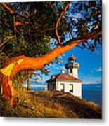 Madrone And Lighthouse Metal Print