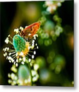 Magic Spring Metal Print