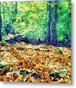 Magic Stone Circle Metal Print