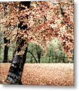 Magical Fall Metal Print