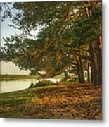 Magical Fantasy Style Forest Scene With Lake During Sunset Metal Print