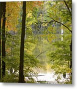Magical Maplewood Metal Print