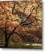 Magnificent Autumn Metal Print by Anne Gilbert