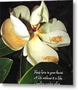 Magnolia Blossom In All Its Glory - Keep Love In Your Heart Metal Print