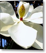 Magnolia Carousel Metal Print