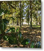 Magnolia Leaves Metal Print