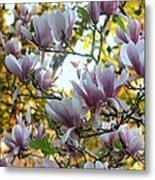 Magnolia Maidens In A Border Metal Print