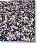 Magnolia Petals Metal Print