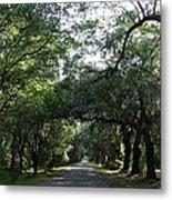 Magnolia Plantation Road Metal Print