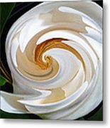 Magnolia Study No 1 Metal Print by Chad Miller