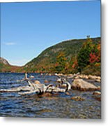 maine 1 Acadia National Park Jordan Pond in Fall Metal Print