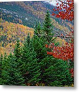 maine 57 Baxter State Park Loop Road Fall Foliage Metal Print