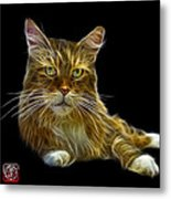 Maine Coon Cat - 3926 - Bb Metal Print