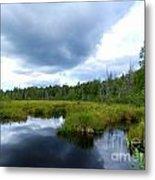 Maine Pond Metal Print