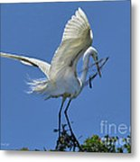 Maintaining The Nest Metal Print