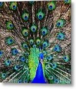 Majestic Blue Metal Print