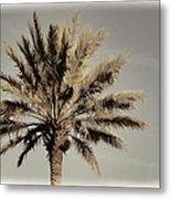 Majestic Palm Metal Print
