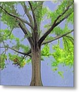 Majestic Tree With Birds Nest Metal Print
