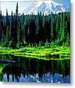 Majestic View 2 Metal Print