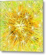 Make A Wish In Greenish Yellow Metal Print