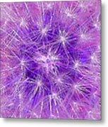 Make A Wish In Purple Metal Print