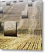 Make Hay While The Sun Shines  Metal Print