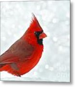Male Cardinal In The Snow - Digital Paint Metal Print