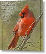 Male Cardinal On Twigs With Bible Verse Metal Print