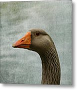 Male Graylag Goose Profile Metal Print by Denyse Duhaime