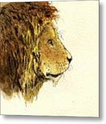 Male lion head Metal Print