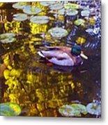 Mallard Duck On Pond 2 Metal Print