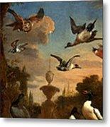Mallard Golden Eagle Wild Fowl In Flight Metal Print