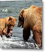 Mama And Baby Grizzly Bear At The Falls Metal Print