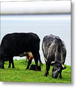 Mama Daddy And Baby Metal Print