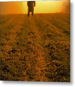 Man In Field At Sunset Metal Print