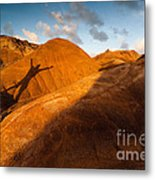 Man On Mars Metal Print