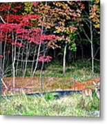 Man Ruins Nature Metal Print