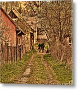 Man With A Horse Metal Print